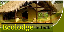 Ecolodge in India
