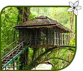 Ecolodges In India