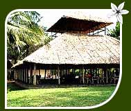 Hornbill Camp Resort