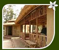 Manas Jungle Camp